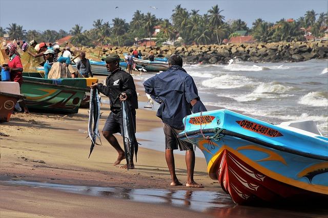 Circuit Sri Lanka Negombo port
