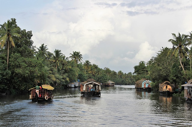 Circuit Inde du Sud houseboats